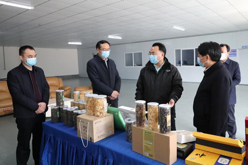 赵文峤在通江县裕德源润耳生物科技有限公司调研