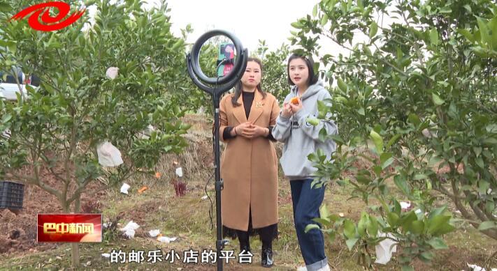 3月29日《巴中新闻》视频